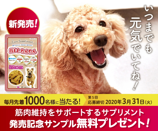 【AD】愛犬の筋肉の衰えをおいしくサポート