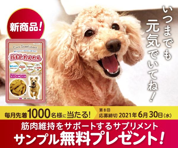 【AD】筋トレわんわんサンプル無料プレゼント
